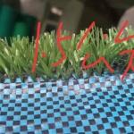 1.5公分草坪网