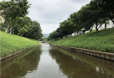 河道�坡整治工程