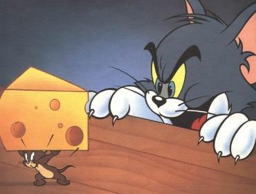 谁动了我的奶酪---记一起精神病患者被离婚案