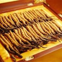 东乡冬虫夏草回收价格_老六专业礼品回收商