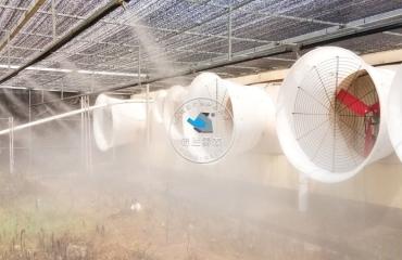 湖北随州中粮集团猪场喷雾除臭消毒