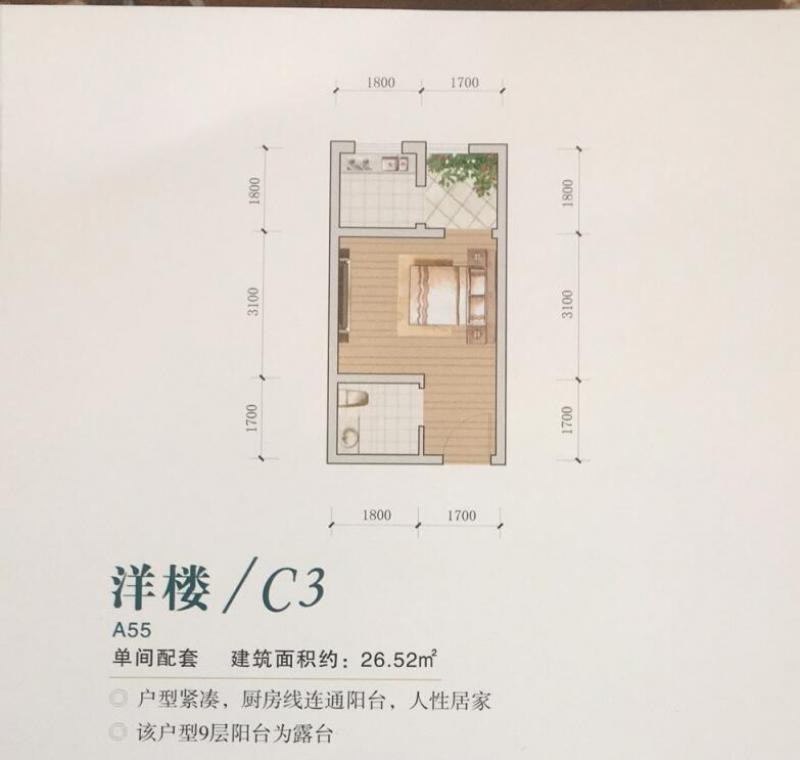 九坝生态度假区户型C3