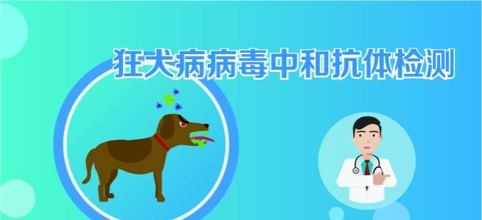 狂犬中和抗体检测