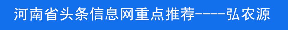 河南省头条信息网