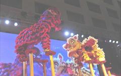 梅花桩舞狮