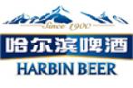 2015哈尔滨啤酒——楼宇派发活动