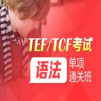 【TEF/TCF考试】语法单项通关班