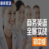 【精英职场】商务英语全景实战 初中级