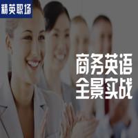 【精英职场】商务英语全景实战