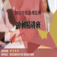 2017中医助理执业医师冲刺精讲班
