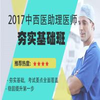 2017中西医助理医师夯实基础班