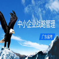 中小企业战略管理(广东省考)串讲班