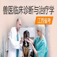 兽医临床诊断与治疗学(江西省考)串讲班