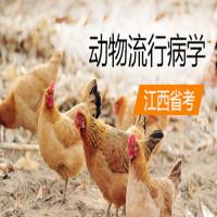 动物流行病学(江西省考)串讲班