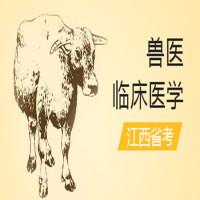 兽医临床医学(江西省考)串讲班