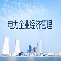 电力企业经济管理串讲班