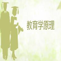 教育学原理串讲班
