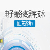 电子商务数据库技术(山东省考)串讲班