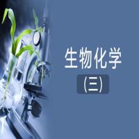 生物化学(三)串讲班