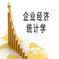 企业经济统计学串讲班
