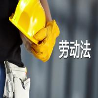 劳动法基础学习班