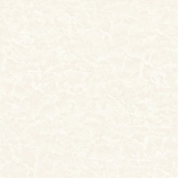 超白砖MXR8CB17