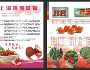 草莓单页设计