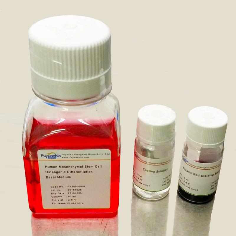 人间充质干细胞成脂诱导试剂盒