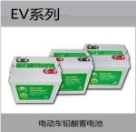 瑞达蓄电池EV系列
