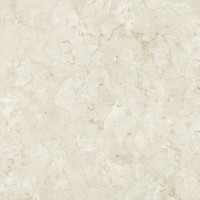 DT28806-银光米黄