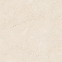 G28841-香妃米黃
