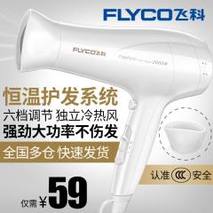 飛科吹風機家用發廊理發店大功率電吹風冷熱風學生吹風筒FH6232