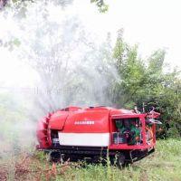 新型打药机 果园打药机 果园喷雾机