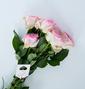 �r花的�影下藏著汲水的根!| ���o�@�L和老��的表白信