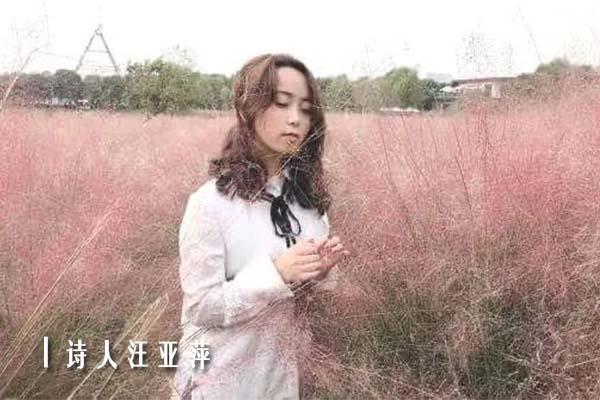 汪亚萍2.jpg