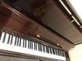 学钢琴 硬核干货:车尔尼335第5、6首最强教学