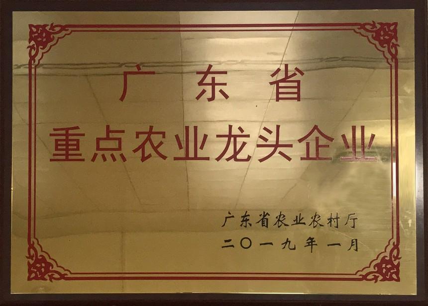 广东省重点农业龙头企业.jpg