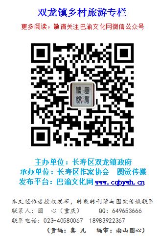 双龙镇乡村旅游专栏.png