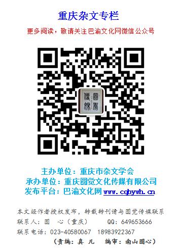 重庆杂文专栏.png