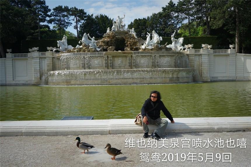 07_19050902维也纳美泉宫喷水池也嘻鸳鸯.jpg