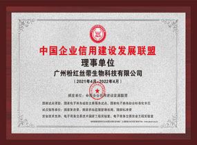 中国企业信用建设发展联盟理事单位