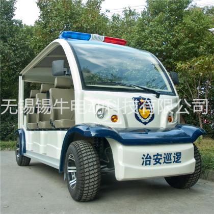 电动巡逻车案例