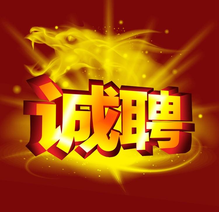 5424188_101158336156_2.jpg
