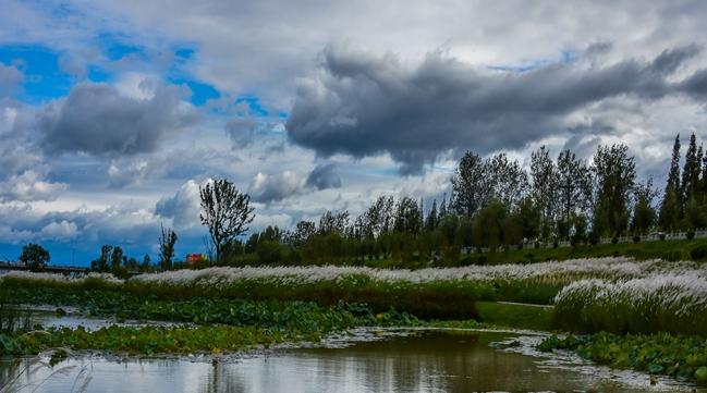 汉中湿地公园.jpg