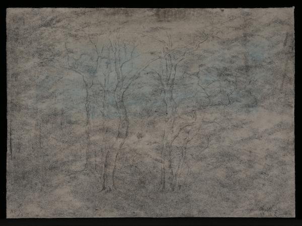 寒林图 28x38.3cm 2018 版画(版数:AP1:3).jpg