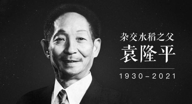 悼念袁隆平:他是我们永远的榜样