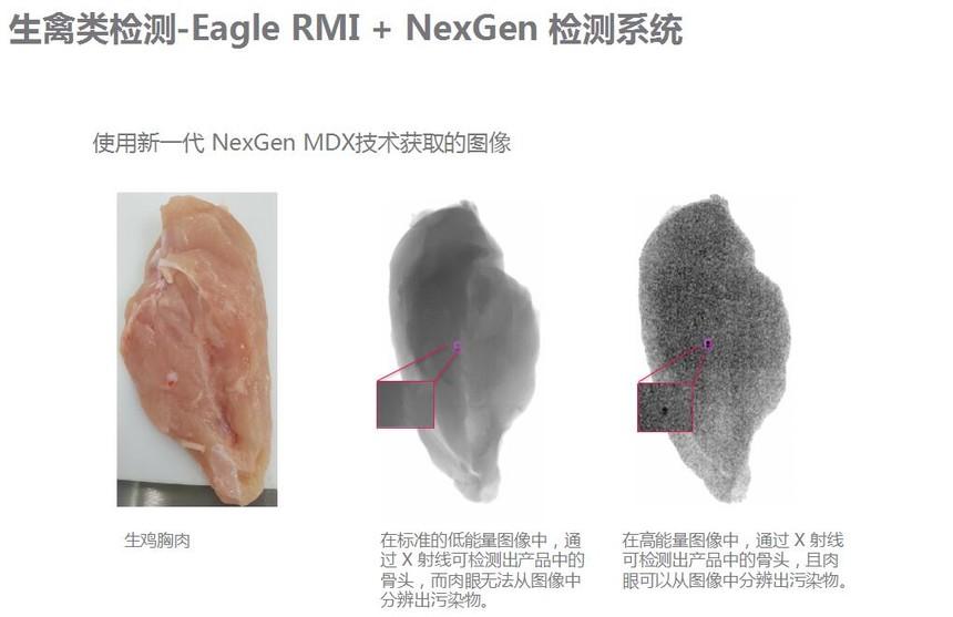 生禽类检测2.jpg