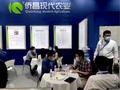 上海ACE展会