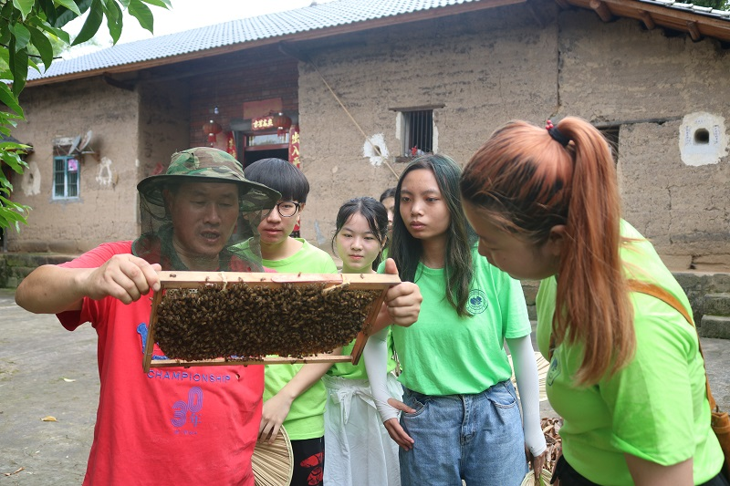 养蜂人向志愿者展示蜜蜂.JPG