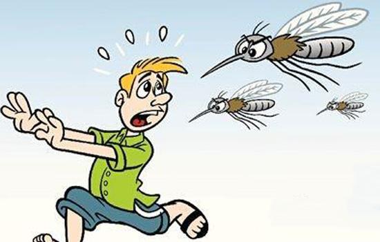 蚊子-疾病1.jpg